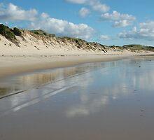 Dune Wall (Beechford) by Susie Raine