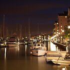 Portishead Marina at Night by Iani