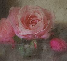 Rose Time by Lozzar Flowers & Art