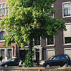 Amsterdam by George Crook