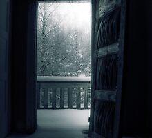 8.12.2010: Dark Winter Day by Petri Volanen