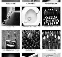"""""""The Intimate Lives Of Eggs"""" - egg puns by John Hartung"""