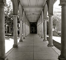 Arches of Adelaide Uni by Ali Brown