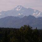 Denali Peak from south viewpoint by yakkphat