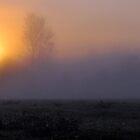 Cinematic Sunrise 1 by RIDGEWORKS
