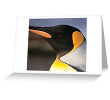 King Penguin, Heard Island Greeting Card