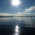 Spring morning, Sandy Bay, Tasmania by RainbowWomanTas