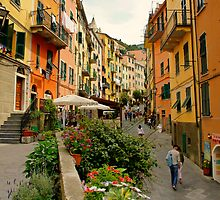 Riomaggiore by Harry Oldmeadow