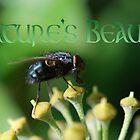 Nature's Beauty by Rowan  Lewgalon