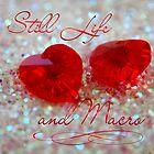 Still Life and Macro by Rowan  Lewgalon
