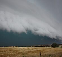 Severe storm near Crystal Brook by Tim Eckert