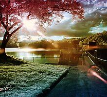 Light Dancer by Kym Howard