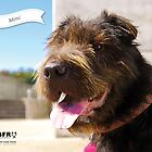 Mimi :: by Wet Nose Fotos by BFRQLD