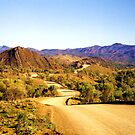 Winding through the Flinders Ranges by Michael John