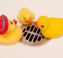 """Where Did All The Water Go?"" - rubber ducks looking for water by John Hartung"