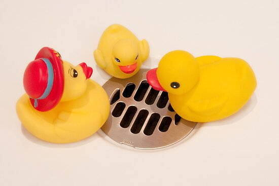 """""""Where Did All The Water Go?"""" - rubber ducks looking for water by John Hartung"""