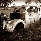 Lots of rust and two emus by myraj