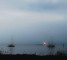 Misty Blue by Gail Bridger