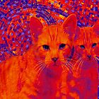 pop art cats by jashumbert