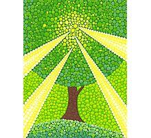 Tree mana energy Photographic Print