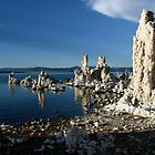 Mono Lake, California  by sccaldwell