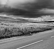 Yorkshire Dales, Ribblehead by Lee Davies