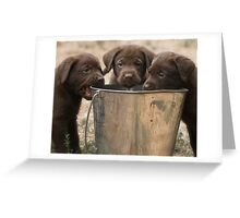 The Bucket Brigade Greeting Card