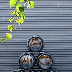 Wine Barrels by Sili