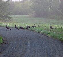 Hells Bend School Crossing by Jack Thomas