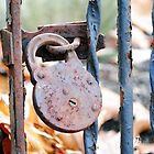 Locked In by Jessica Manelis