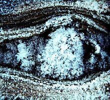 Someone's watching? by Tarolino