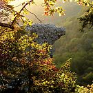 Sunrise , framing the Hawksbill Crag by NatureGreeting Cards ccwri