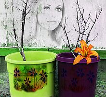 I Feel So Ugly But My Pot Is Pretty - Image and Poem by CarolM