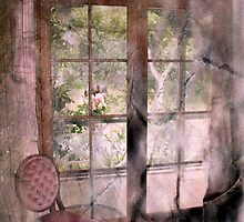 """""""A Room with a View ..."""" by Rosehaven"""