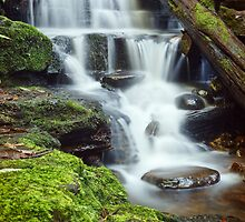 Myrtle Gully Falls, Lower Section #2 by Chris Cobern