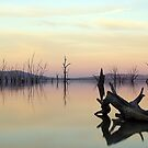 Lake Mokoan, Victoria, Australia by Cole Stockman