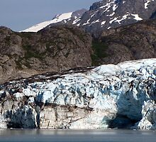 Glacial contrasts by Nancy Richard