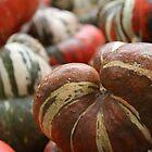 Autumn Harvest by Aimee Wilson