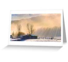 Morning Glory Greeting Card