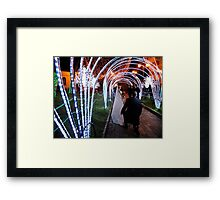 Honey...will you marry me this Christmas? Framed Print