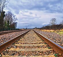 On The Right Track by Alex Hardie