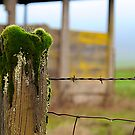 What side of the fence are you on? by Carl LaCasse