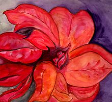 The Flower of the Holy Night *  Poinsettia by Anne Gitto