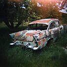 Car in the Home Paddock_3 by Steve Lovegrove