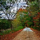 Just Down the Road by Lisa G. Putman