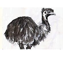 emu#2 Photographic Print