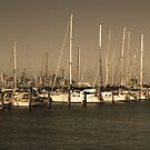 williamstown by Murray Newham