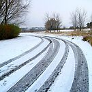 rural.road.covered.with.snow_Hungary.Europe.2010.Dec by ambrusz
