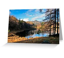 A Wonderful View of Blea Tarn Greeting Card