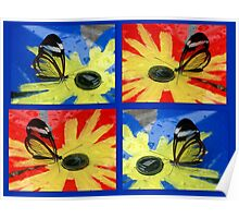 Glasswing on Red Yellow and Blue Poster